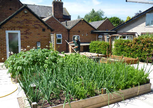 Manor House Veg Garden - 1 (500)